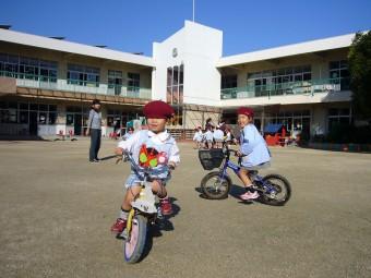 広いので自転車で走り回れます!