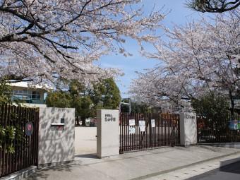 入り口の様子。春は桜がキレイです!