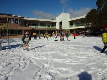 雪がふったね!
