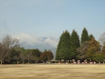 自然豊かな広い公園が隣りで良かった!