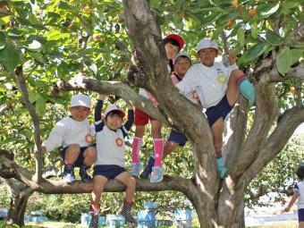 食後のお楽しみ木登り!