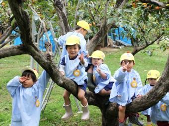 木登りもできるよ!